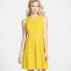 Yellow Lace Eyelet Kensie Dress, Size S